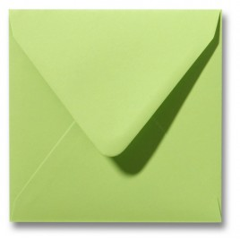Envelop Roma 14 x 14 cm - 50 stuks - Wit